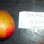 Cornish Aromatic